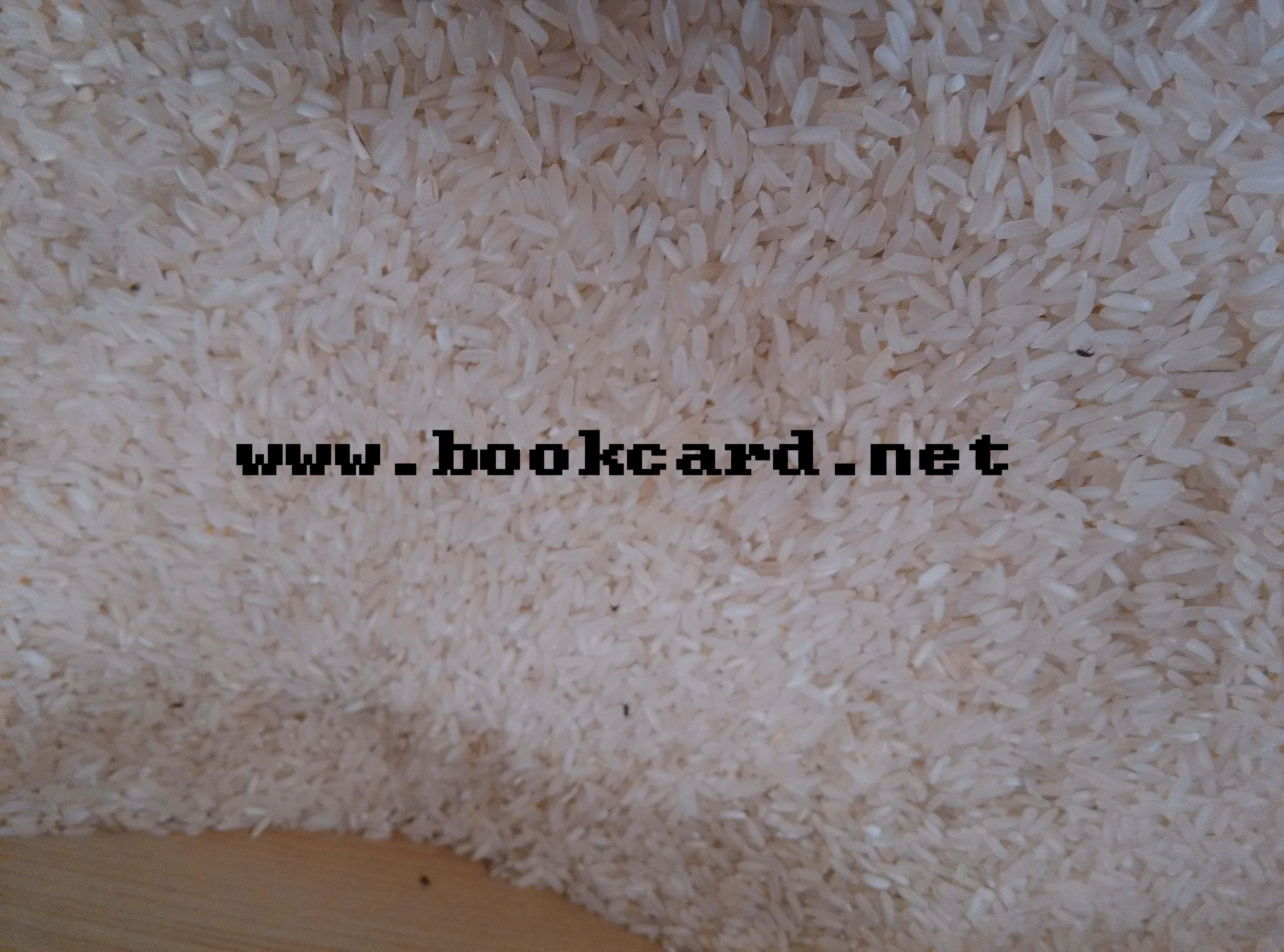 大米-防虫,防谷藕