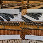 鋼琴-十二平均律